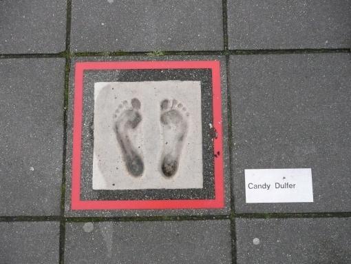 Niederlande Biometrie 4